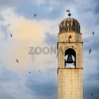 Schwalben umkreisen den Uhrturm in Dubrovnik