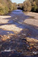 Ecological management of river banks