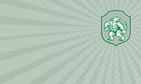 Business card Green Turtle Fighter Mascot Shield Retro