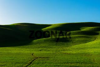 Toskana Huegel Schatten Wiese