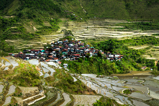 Rice terraces. Banaue, Philippines