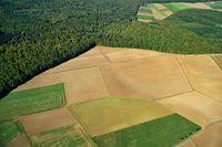 Herbstliches Agrarland