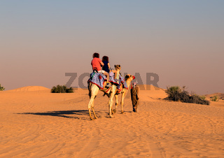 camel safari on sand dunes