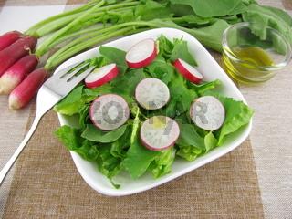 Frischer Radieschensalat