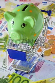 Grünes Sparschein in einem Einkaufswagen auf Eurogeldscheinen