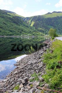 Summer Norway landscape
