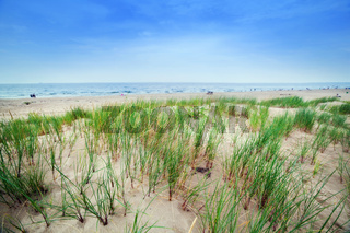 Calm beach with dunes and green grass. Ocean in the background