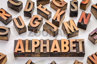 alphabet word typography in wood type