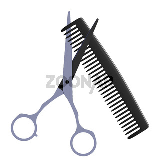 Barber scissors and comb