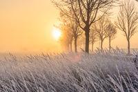 Sonnenaufgang in Oberschleißheim