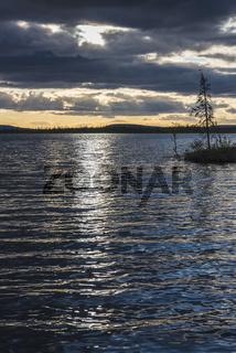 Abendstimmung im Muddus Nationalpark, Lappland