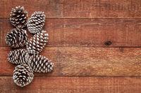 pine cones on barn wood