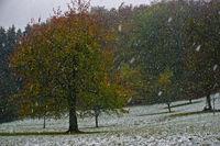 Wintereinbruch im Oktober, Schwäbische Alb,