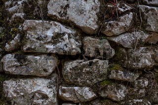 Cobblestone Rusty Wall With Moss and Branches, Pilled Rocks Structure with Roots and Dirt, Barrier of Stones with Irregular and Rough Edges, Mossy Natural Hard Brick Facade