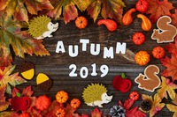 Colorful Autumn Decoration, Text Autum 2019, Wooden Background