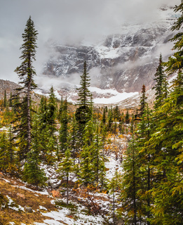 Cold start of autumn in Jasper National Park