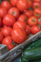 Fresh tomatoes and courgettes on sale