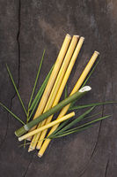 Green, yellow bamboo sticks with leaves on wooden background.