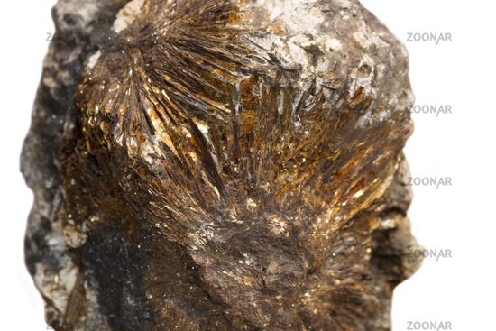 astrophyllite sun closeup mineral