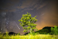 Green tree Milky way Meteor Shower