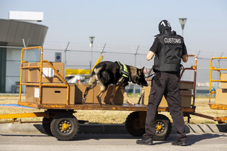 Customs and border protection officer and dog