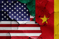 flags of USA and Cameroon painted on cracked wall