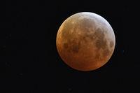 am 21.01.2019, 04:10 Uhr, Eintritt des Supermondes in den Kernschatten der Erde... Blutmond *Mondfinsternis*