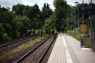Mohnblumen zwischen den Eisenbahnschienen