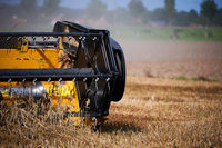 harvester working on wheat field