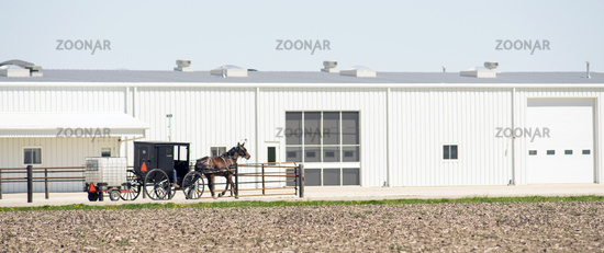 Horse Drawn Carraige Moves Along Towing Farm Tools Trailer