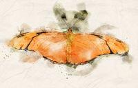 Watercolor Julia Heliconian butterfly