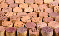 Closeup of a large group of wine corks standing on end