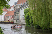 Houses and tree along the canals of Brugge or Bruges