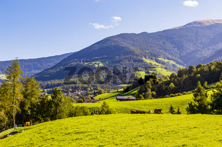 Berge mit Wiese, mountain with meadow