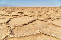 in africa ethiopia danakil   the desert of salt
