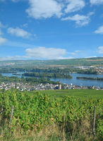 Weinort Ruedesheim am Rhein im Rheingau,Hessen,Deutschland