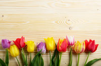 Colorful tulip flowers on wooden table background with space for text
