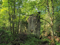 a ruined mill building surrounded by trees in green forest landscape in jumble hole clough in west yorkshire