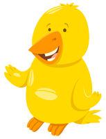 funny canary cartoon animal character