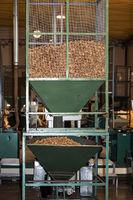 Verarbeitung von Korkeichenrinde zu Scheiben für Champagner-Korken, Korkfabrik Nova Cortica,Portugal