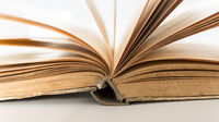 Opened book pages on white background closeup. Love read concept. Knowledge symbol. Book day