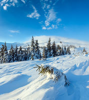 Morning winter mountain landscape, Carpathian