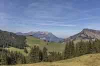 Aussicht auf das Stanserhorn, Gummenalp, Nidwalden, Schweiz, Europa