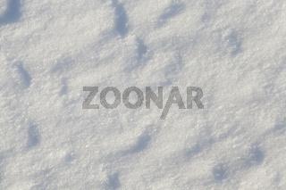 Photo of snow,