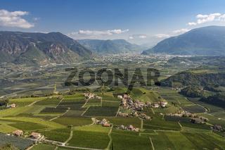 Weinberge in Südtirol mit Blick auf Bozen, Italien
