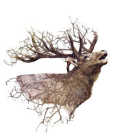 Elk head  with double exposure effect