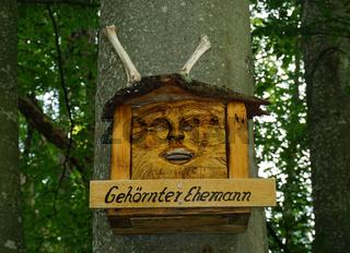 Holzschnitzerei an Baumstamm im Buchenwald