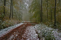 Wintereinbruch im Oktober, Schwäbische Alb