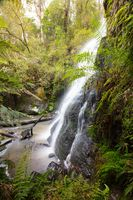 Henderson Falls Cape Otway