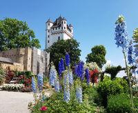 Burg Eltville,  Deutschland,  Eltville,  Rhein